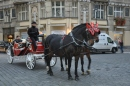 Horse carriage for hire