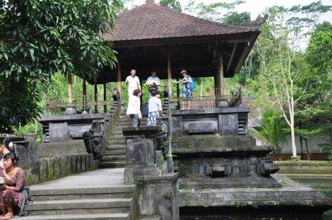 monkey sanctuary1
