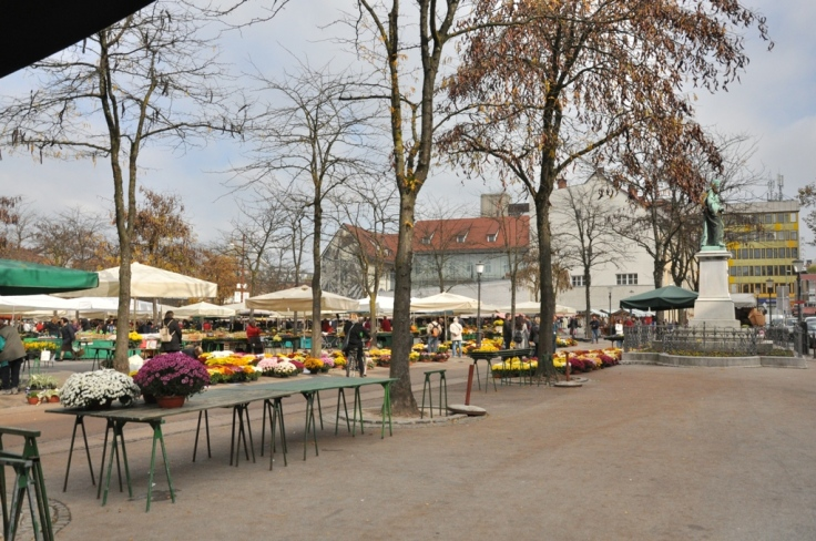 Central & Open Market (1)